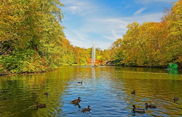 Paysage de lac d'automne avec canards, fontaine et arbres jaunes, parc sofievsky