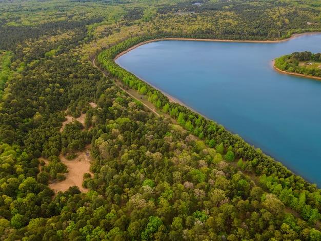 Paysage d'un lac dans une forêt