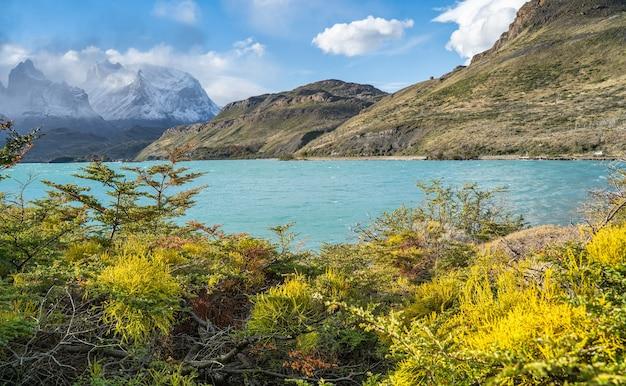 Paysage avec le lac lago del pehoe dans le parc national torres del paine, patagonie, chili.