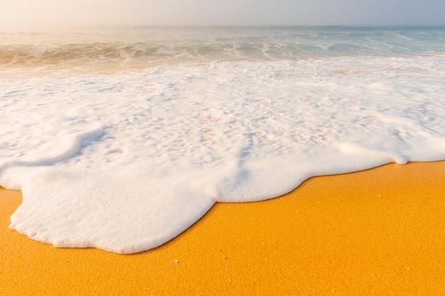 Paysage marin coloré avec plage brumeuse.