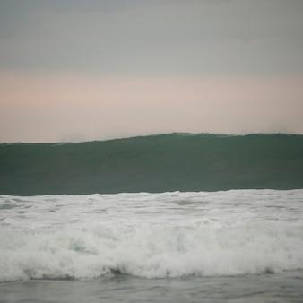 Paysage marin de la côte rica