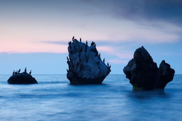 Paysage marin d'été coloré. îles rocheuses avec oiseaux au coucher du soleil