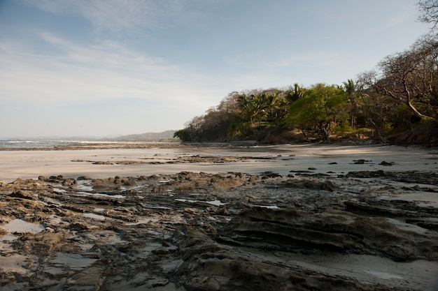 Paysage marin le long de la côte à san jose costa rica
