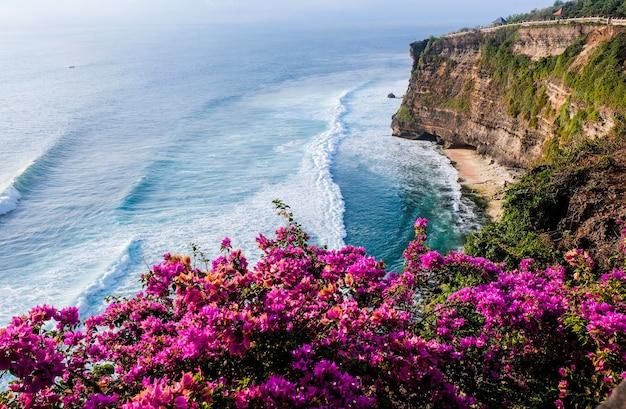 Paysage marin, océan au coucher du soleil. fleurs sur fond de paysage océanique près du temple uluwatu au coucher du soleil, bali, indonésie.