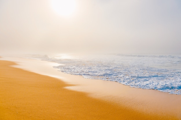 Paysage marin pittoresque avec plage brumeuse.