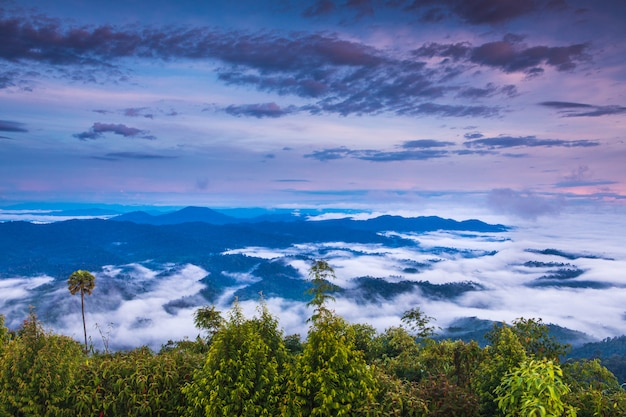 Paysage de mer de brouillard sur la haute montagne dans la province de phitsanulok, thaïlande.