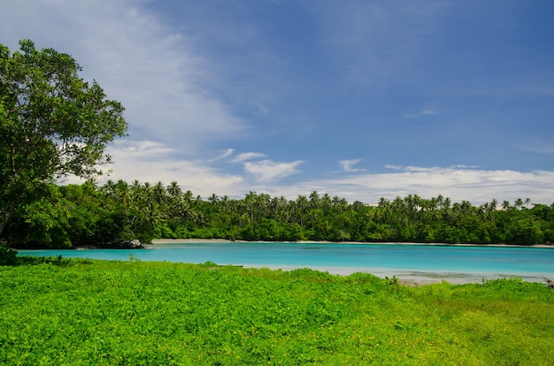 Paysage de la mer entouré de verdure sous un ciel bleu nuageux dans l'île de savai'i, samoa