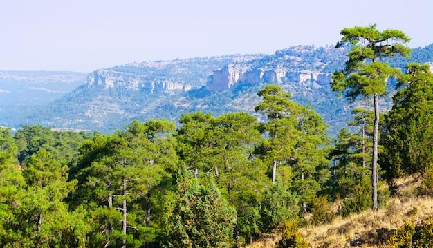 Paysage montagnard de serrania de cuenca