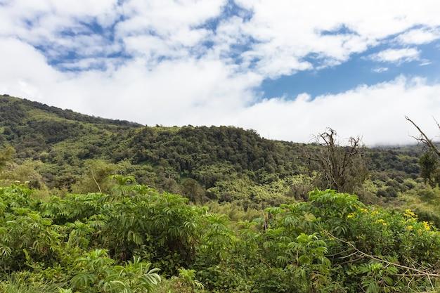 Paysage de la montagne aderdare un ciel bleu et des nuages sur la jungle verte lumineuse au kenya