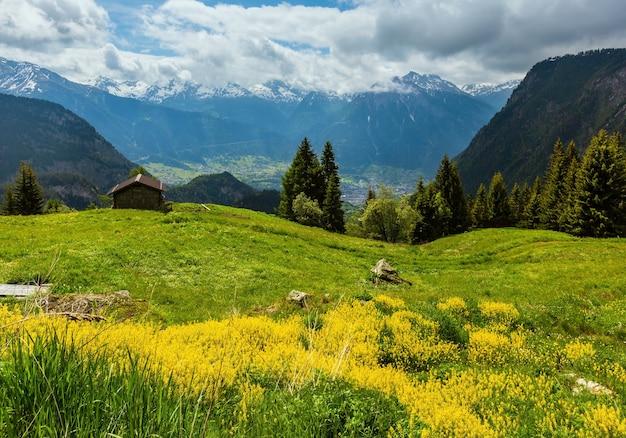 Paysage de montagne des alpes d'été avec des fleurs sauvages jaunes sur la pente des prairies, suisse