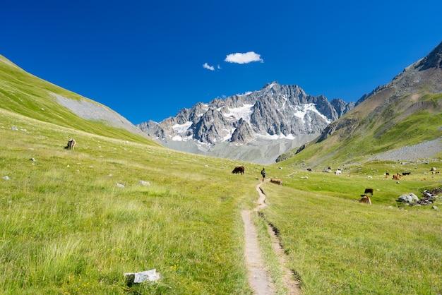 Paysage de montagne sur les alpes françaises, massif des ecrins. montagnes rocheuses pittoresques à haute altitude avec glacier