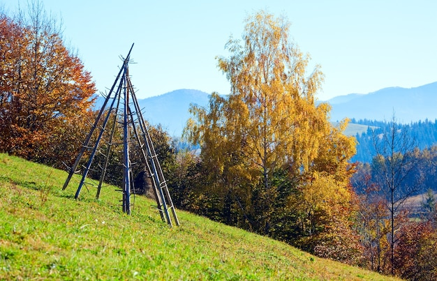 Paysage de montagne d'automne avec des arbres dorés sur pente, carpates, ukraine.