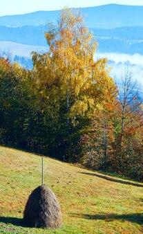 Paysage de montagne d'automne avec botte de foin sur pente, carpates, ukraine.