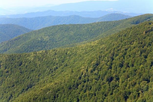 Paysage de montagne brumeux d'été avec forêt verte sur la pente (ukraine, carpates)