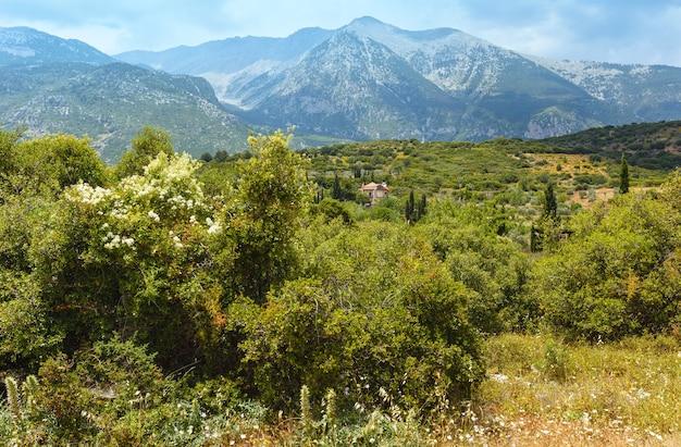 Paysage de montagne d'été mont parnasse, grèce