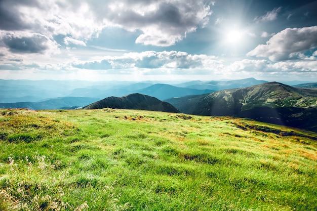 Paysage de montagne en été