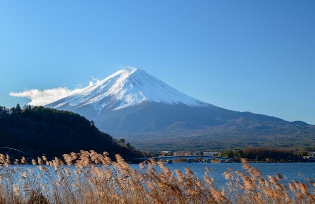 Paysage de la montagne fuji au lac kawaguchiko
