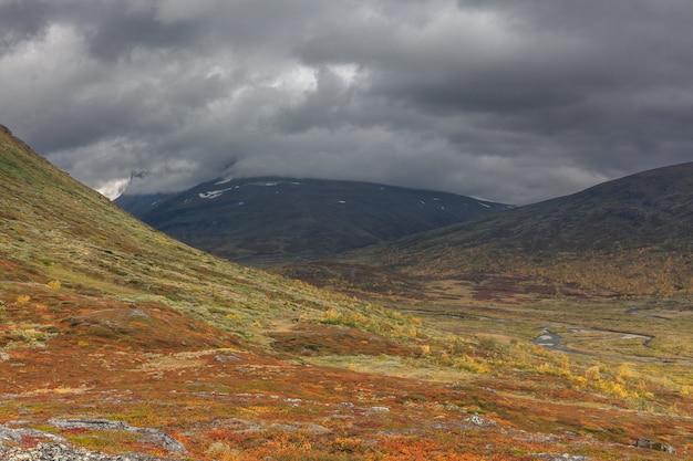 Paysage de montagne avec de l'herbe à coton dans le parc national de suède sarek autour de la piste royale par temps orageux. mise au point sélective