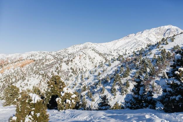 Paysage de montagne d'hiver depuis le téléphérique de la station de ski de beldersay en ouzbékistan