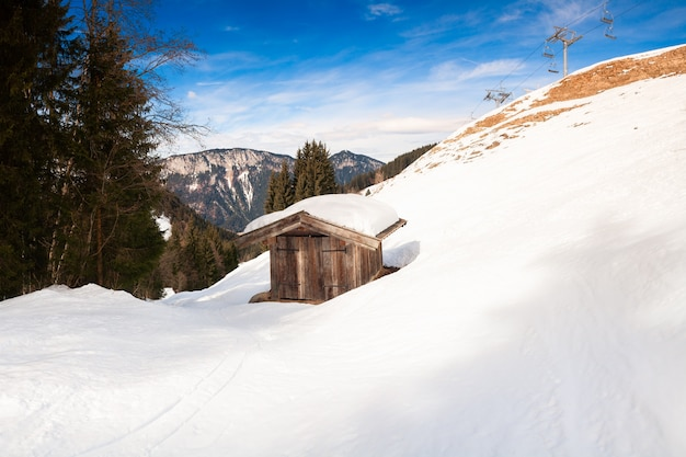 Paysage de montagne d'hiver majestueux avec pin givré sous la lumière du soleil au coucher du soleil
