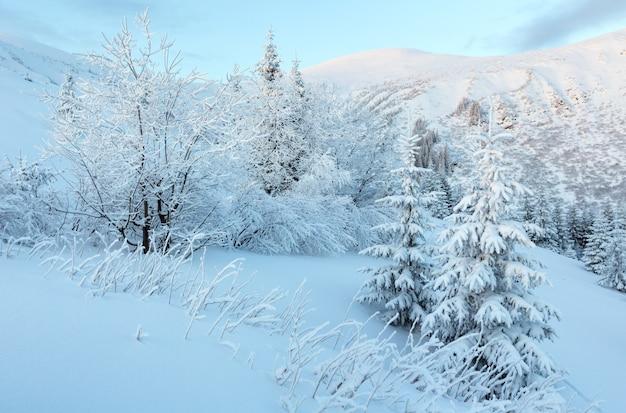 Paysage de montagne d'hiver matin avant l'aube avec des arbres couverts de neige