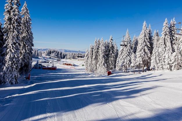 Paysage de montagne d'hiver