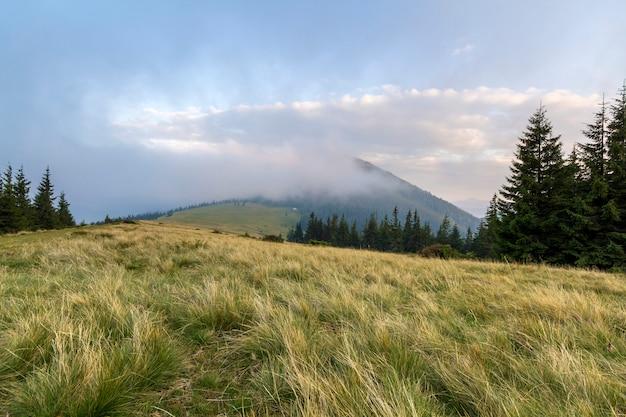 Paysage de montagne par beau temps ensoleillé.