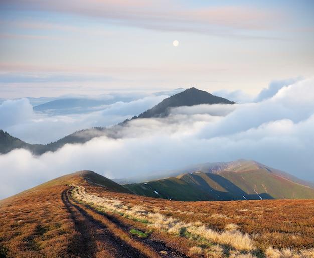 Paysage de montagne avec route et beau brouillard