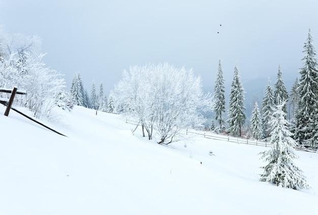 Paysage de montagne terne d'hiver avec clôture et sapins