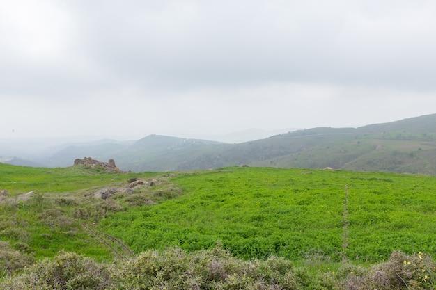 Paysage de montagne avec vue sur la forêt, vallée