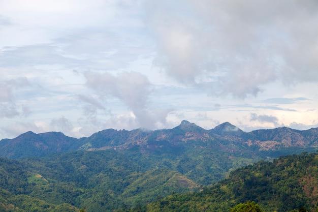 Paysage des montagnes dans la forêt tropicale humide nature abondante en asie thaïlande