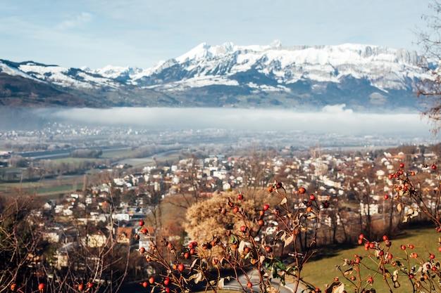 Paysage de montagnes du liechtenstein