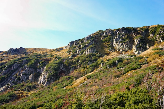 Paysage de montagnes de karkonosze avec des arbres verts en pologne