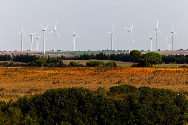 Paysage de moulins à vent