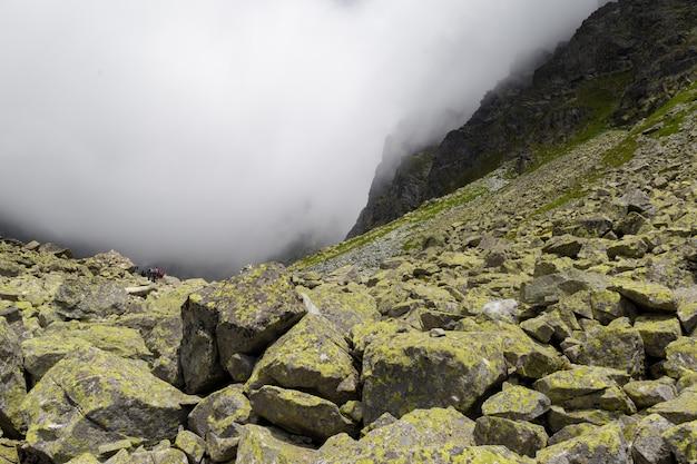 Paysage mystique au sommet de la montagne