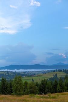 Paysage nature d'été des montagnes karpaty.