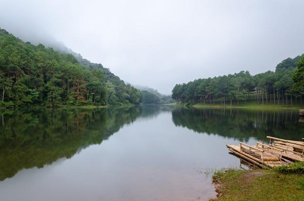 Paysage naturel à l'aube des lacs et des forêts de pins dans le parc national de pang ung de la province de mae hong son, thaïlande