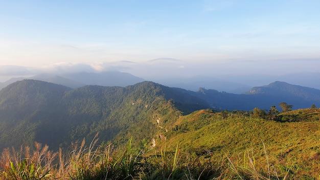 Paysage naturel du parc forestier de phu chi fa à chiang rai, province la plus septentrionale de thaila