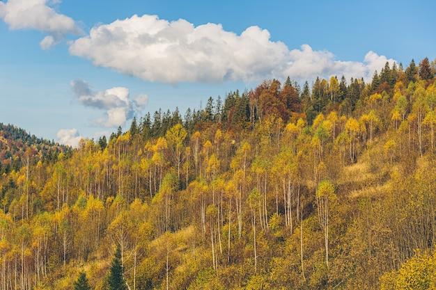 Paysage naturel de la forêt d'automne et des montagnes