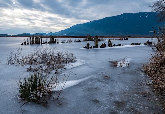 Paysage naturel gelé