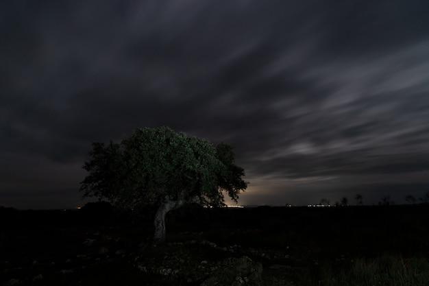 Paysage de nuit dans l'ancienne villa romaine de los terminos à monroy. estrémadure. espagne.