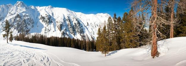 Paysage panoramique de montagne d'hiver majestueux avec pin givré sous la lumière du soleil au coucher du soleil