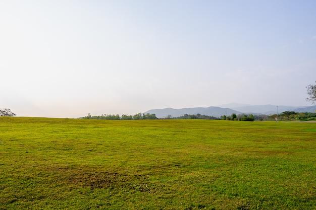 Paysage de parc d'herbe et de parc public environnement vert utiliser comme fond naturel, toile de fond.