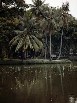 Un paysage d'un parc urbain