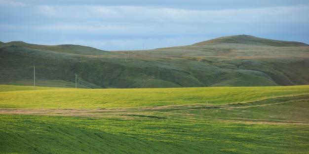 Paysage, pâturage en contrebas des montagnes herbeuses