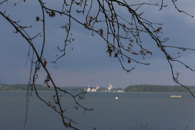 Paysage pittoresque avec monastère à l'horizon et branche d'arbre au sommet