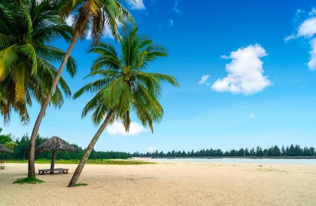 Paysage de plage d'été