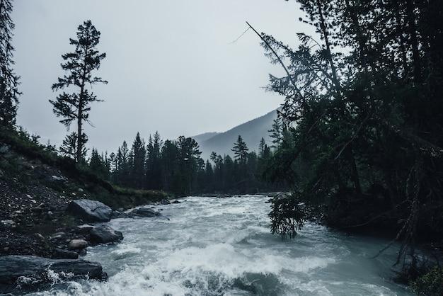 Paysage pluvieux sombre avec une puissante rivière de montagne sous de fortes pluies. vue atmosphérique sombre aux rapides turbulents des précipitations. ruisseau de montagne dans la forêt sombre en averse. puissante rivière de montagne sous la pluie.