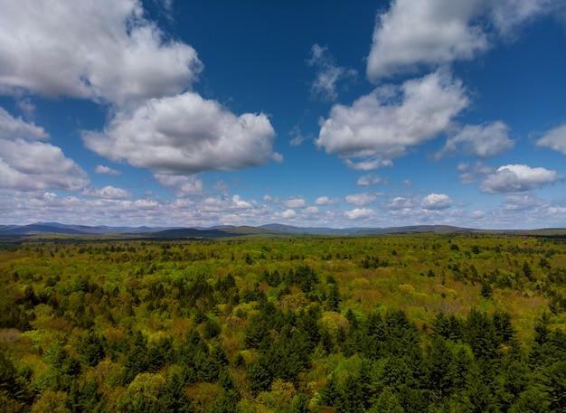 Paysage de pocono mountains en pennsylvanie avec prairie verte et forêt