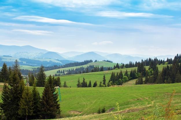 Paysage de prairies verdoyantes avec des sapins et des montagnes